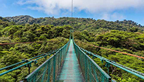 View the Cloud Forest from the Aerial Skywalk, Monteverde Rainforest, Costa Rica