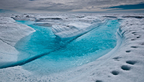 Experience the Big Arctic Five, Greenland